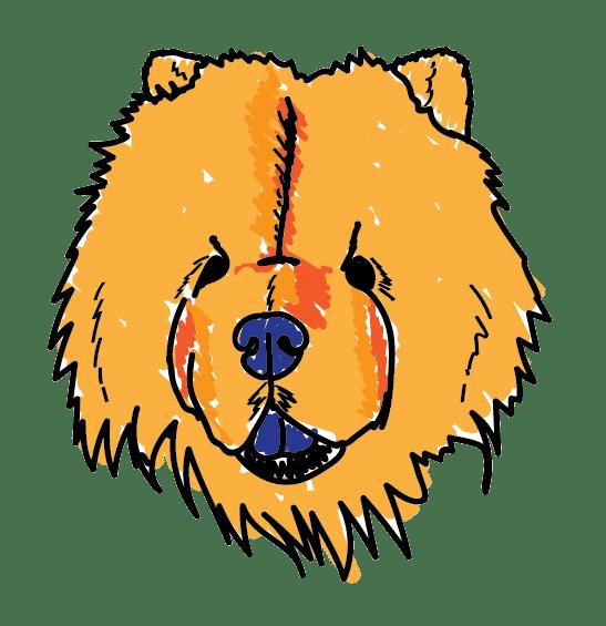 Strange Dog Print And Design Ohakune New Zealand