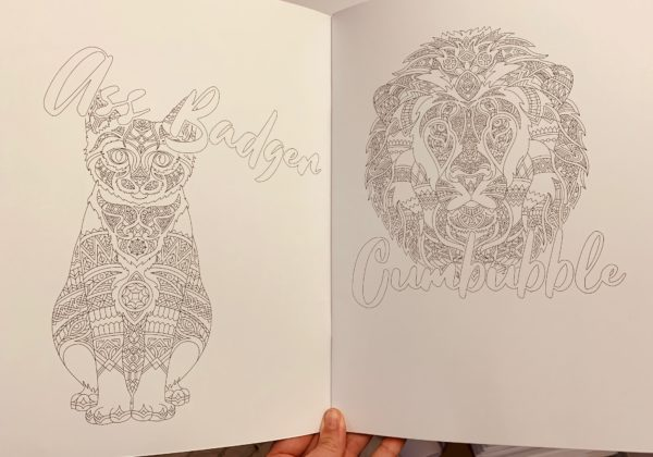 F*ck off I'm Colouring adult colouring book